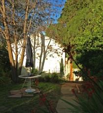 backyard-morning-light