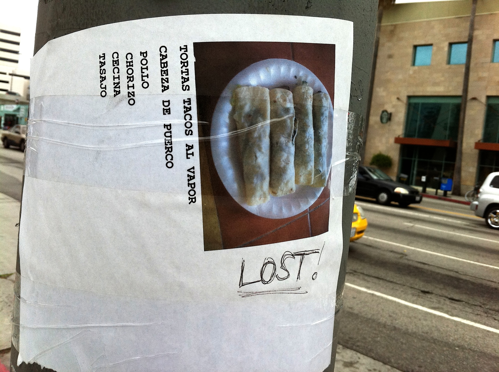 lost-pole